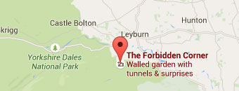 How To Find The Forbidden Corner